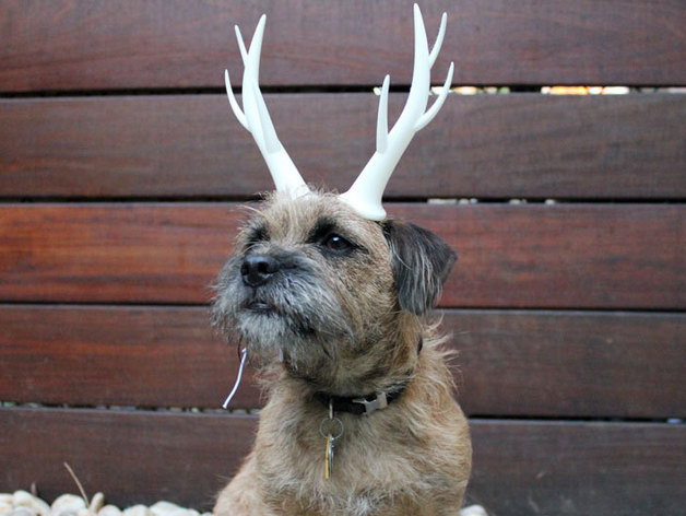 3D Print Antlers for Dog